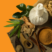 List of Top Ayurveda Courses in Bangalore: Find Admissions 2020 Rankings, Fees, Placements